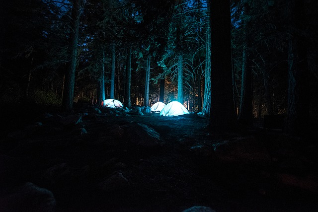 night time camping