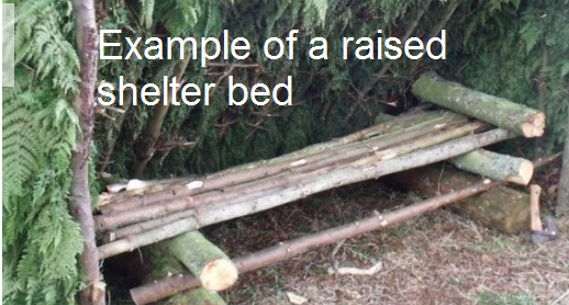 raised shelter bed