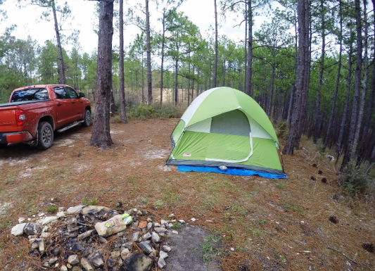 coleman-sundome-6-person-tent-pitched & Coleman Sundome 6 Person Tent Review u2013 Does It Really Have Low ...