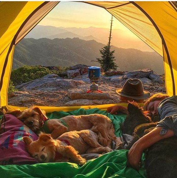 Camping Top Of Mountain