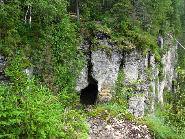 Cliff Cave in Forest
