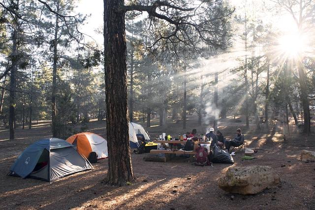 Homey Campsite